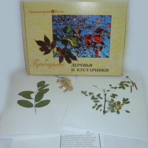 Гербарий Деревья и кустарники