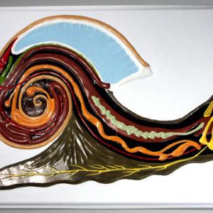 3203_Барельефная-модель-Внутреннее-строение-брюхоногого-молю
