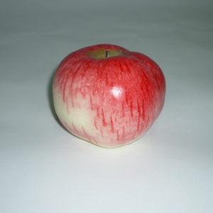 яблоко Апорт