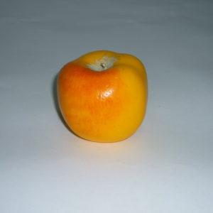 яблоко Славянка